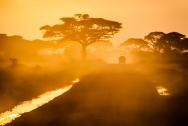 Car Tour Africa 10 days